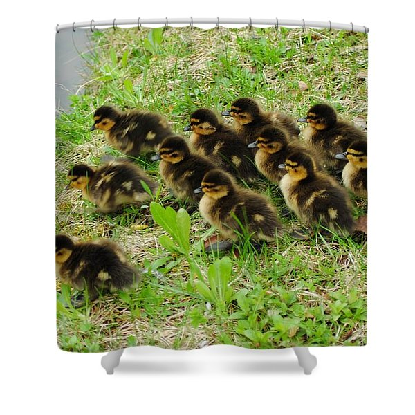 Traffic Jam Shower Curtain by Frozen in Time Fine Art Photography