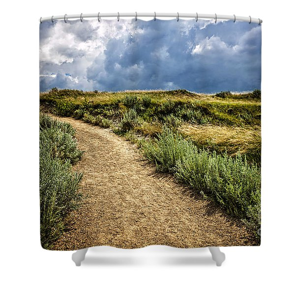 Trail In Badlands In Alberta Canada Shower Curtain by Elena Elisseeva