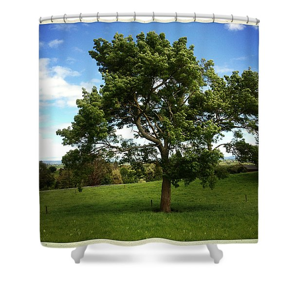 Tree Shower Curtain by Les Cunliffe