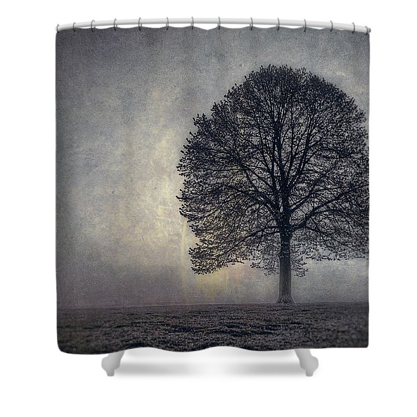 Tree Of Life Shower Curtain by Scott Norris