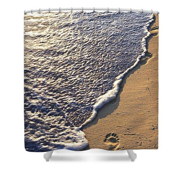 Tropical beach with footprints Shower Curtain by Elena Elisseeva