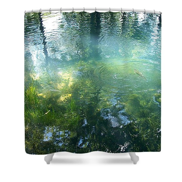 Trout Pond Shower Curtain by Mary Wolf