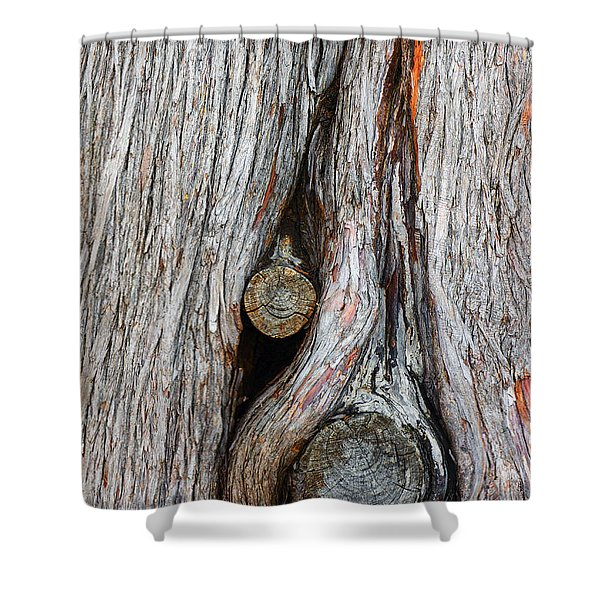 Trunk Knot Shower Curtain by Carlos Caetano
