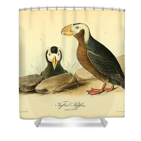 Tufted Puffins Shower Curtain by John James Audubon