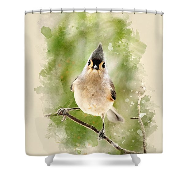 Tufted Titmouse - Watercolor Art Shower Curtain by Christina Rollo
