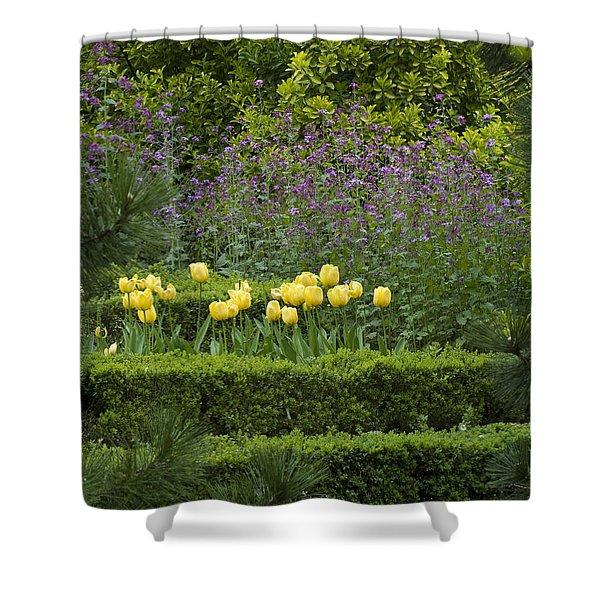 Tulip Garden Shower Curtain by Frank Tschakert