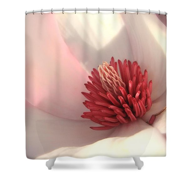 Tulip Tree Blossom Shower Curtain by Carol Groenen