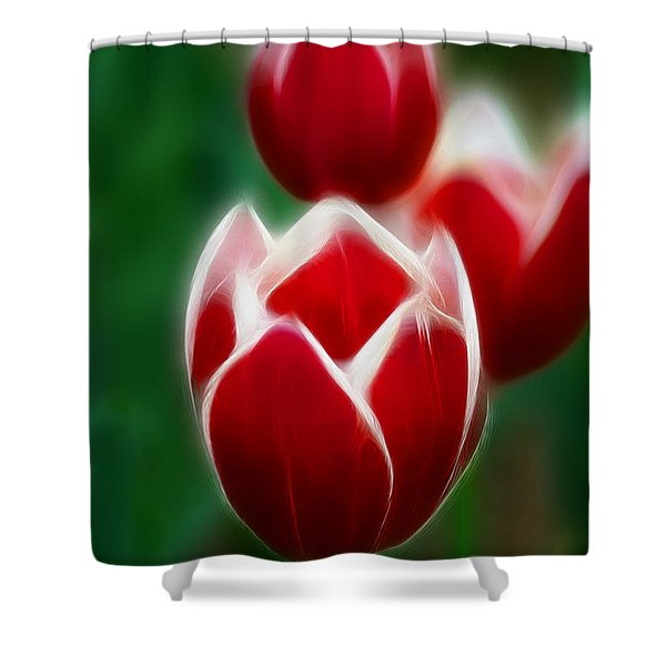 Tulips-6835-fractal Shower Curtain by Gary Gingrich Galleries