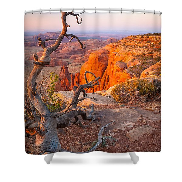 Twisted Remnant Shower Curtain by Inge Johnsson