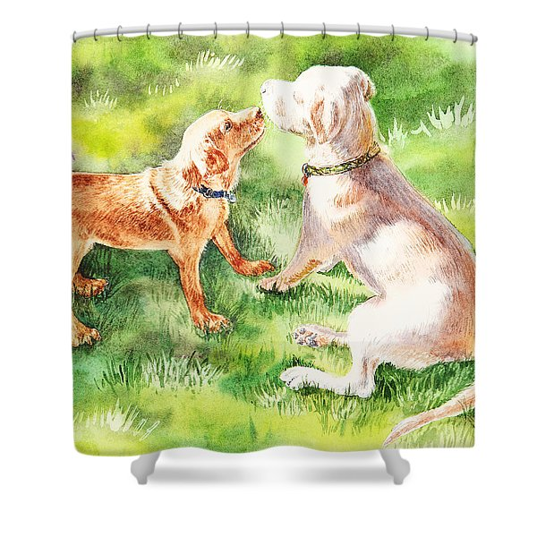 Two Brothers Labradors Shower Curtain by Irina Sztukowski