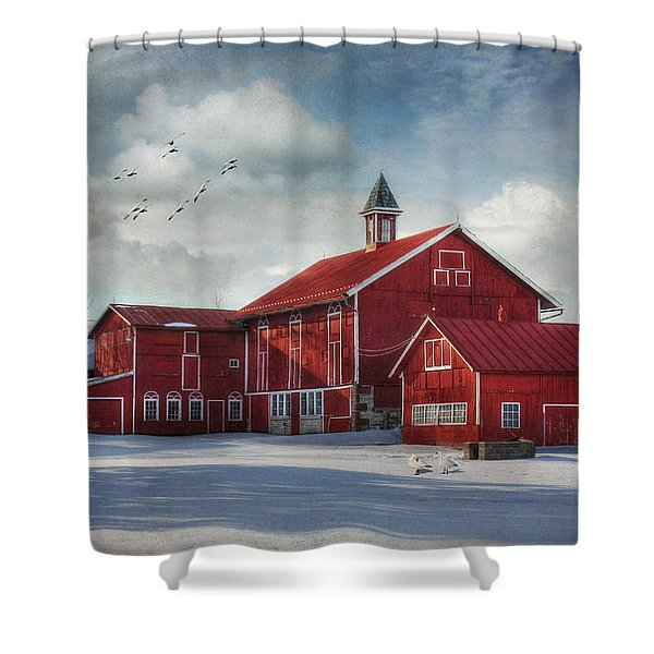 Two By Two Shower Curtain by Lori Deiter