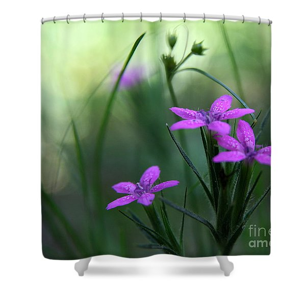 Ultra Violet Shower Curtain by Neal  Eslinger