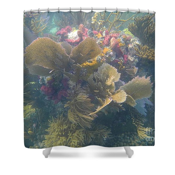 Underwater Colors Shower Curtain by Adam Jewell
