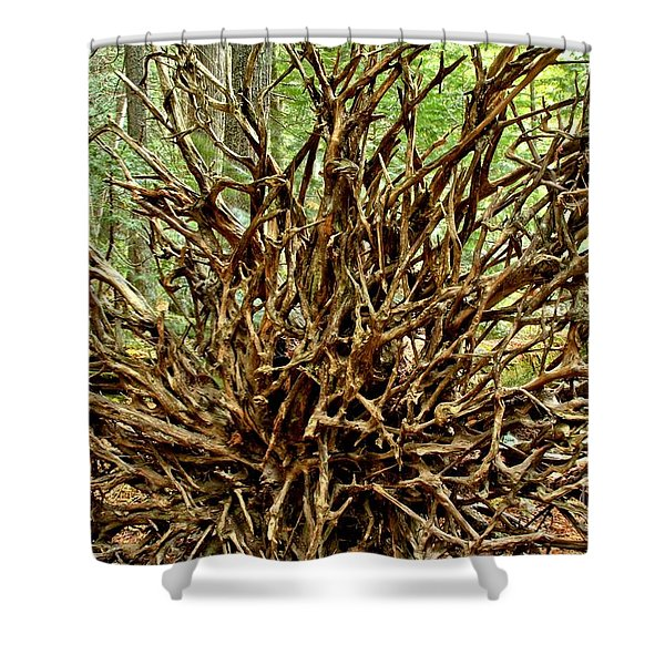 Uprooted Shower Curtain by Adam Jewell