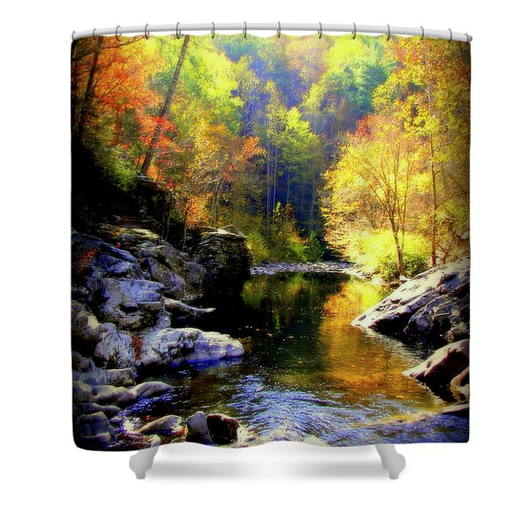 Upstream Shower Curtain by Karen Wiles