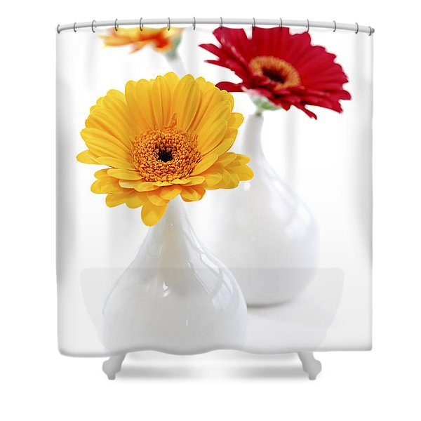 Vases with Gerbera flowers Shower Curtain by Elena Elisseeva