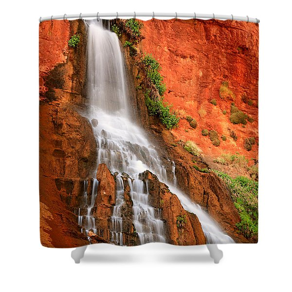 Vaseys Paradise Shower Curtain by Inge Johnsson