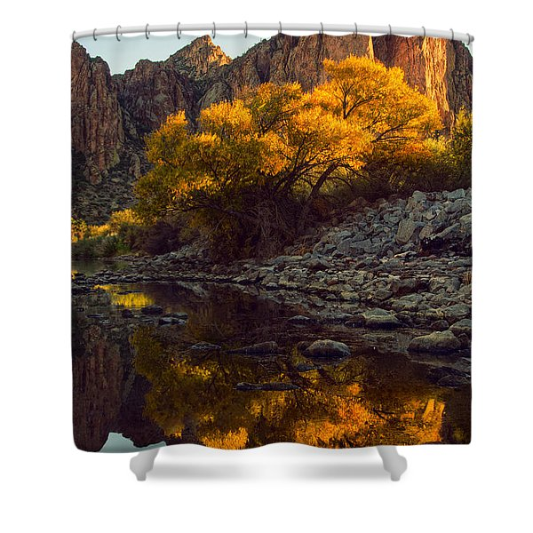 Vertical fall color reflections Shower Curtain by Dave Dilli