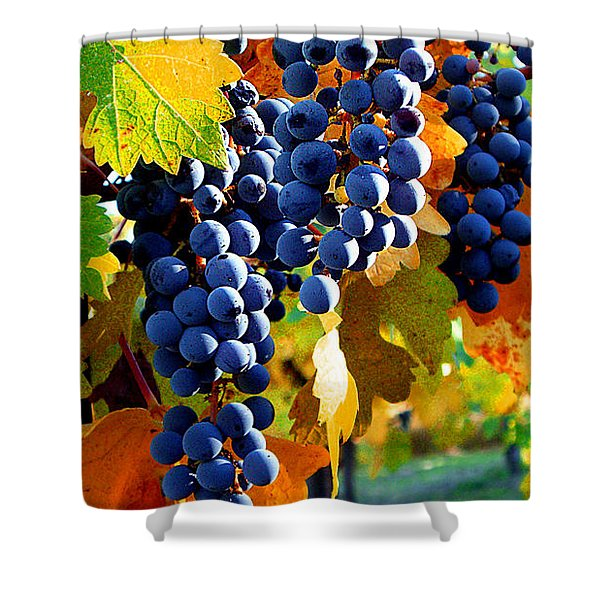 Vineyard 2 Shower Curtain by Xueling Zou