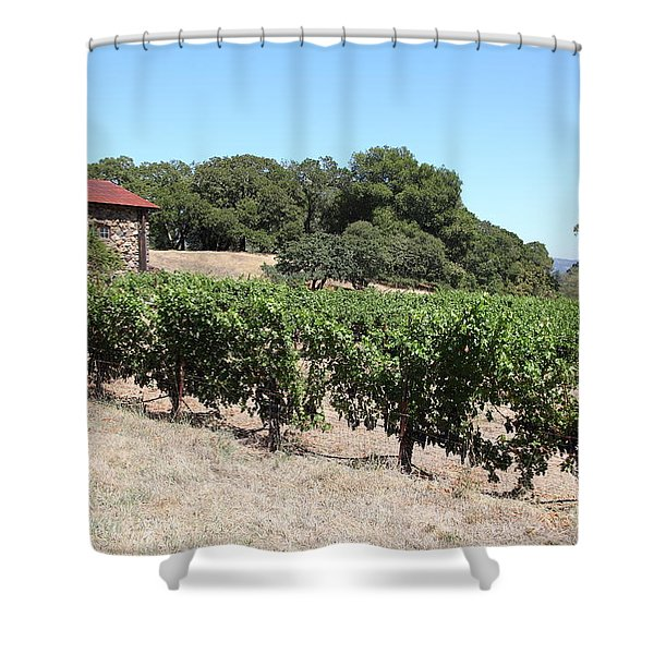 Vineyard and Stallion Barn At Historic Jack London Ranch In Glen Ellen Sonoma California 5D24579 Shower Curtain by Wingsdomain Art and Photography
