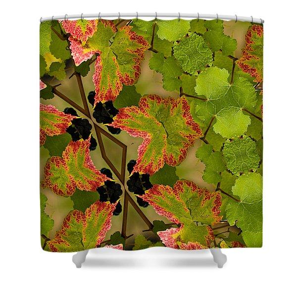 Vineyard quilt Shower Curtain by Jean Noren