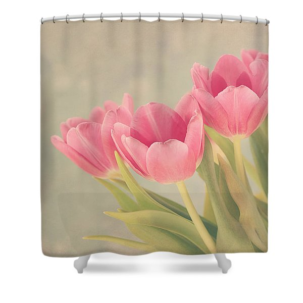 Vintage Pink Tulips Shower Curtain by Kim Hojnacki