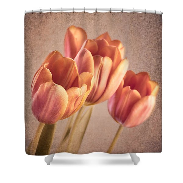 Vintage Tulips Shower Curtain by Wim Lanclus