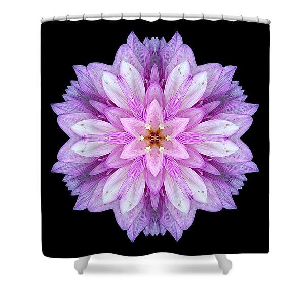 Violet Dahlia I Flower Mandala Shower Curtain by David J Bookbinder
