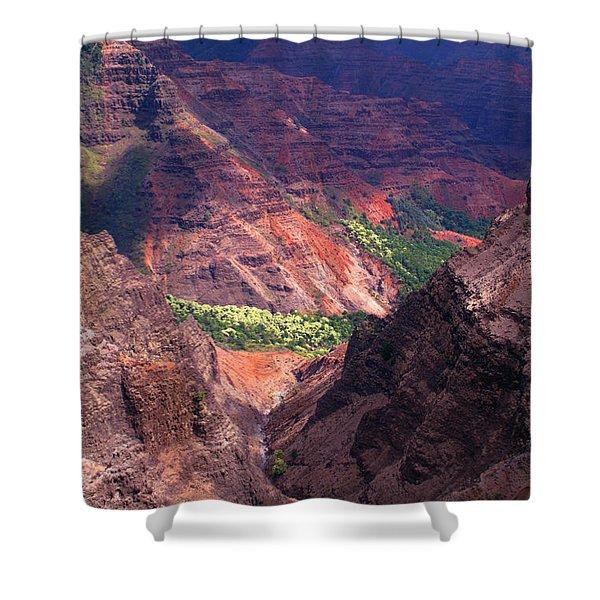 Waimea Canyon 3 Shower Curtain by Brian Harig