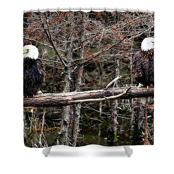 Watchful eyes Shower Curtain by Elizabeth Winter