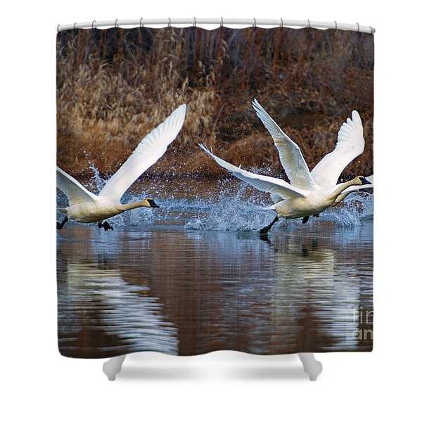 Water Dance Shower Curtain by Mike  Dawson