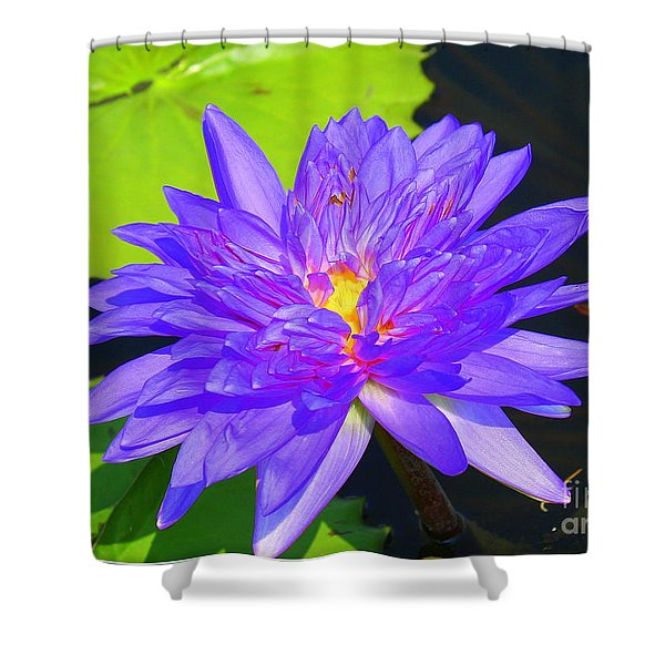 Water Lily Beauty Shower Curtain by Photographic Art and Design by Dora Sofia Caputo