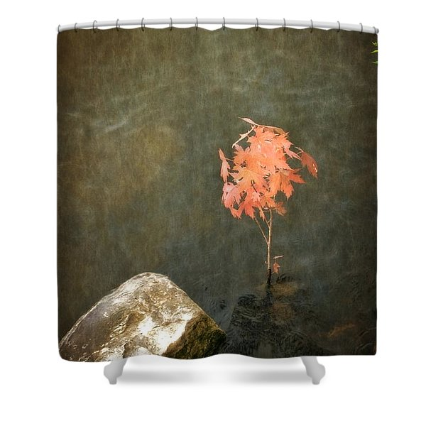 Water Maple Shower Curtain by Michelle Calkins