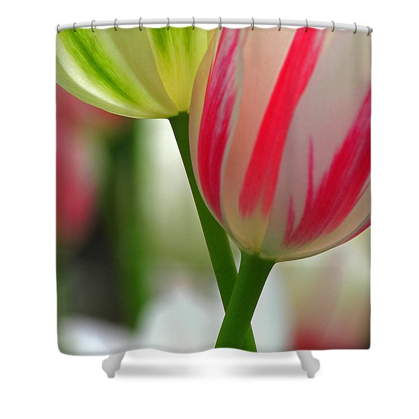We Are Going To Be Friends Shower Curtain by Juergen Roth