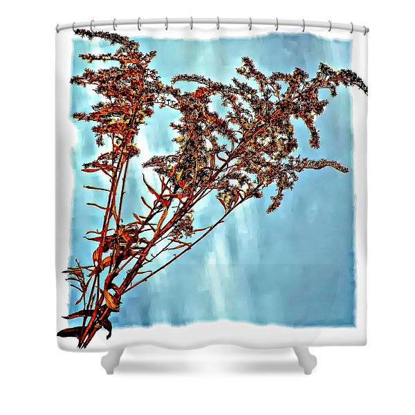 Weed Patch Shower Curtain by Steve Harrington