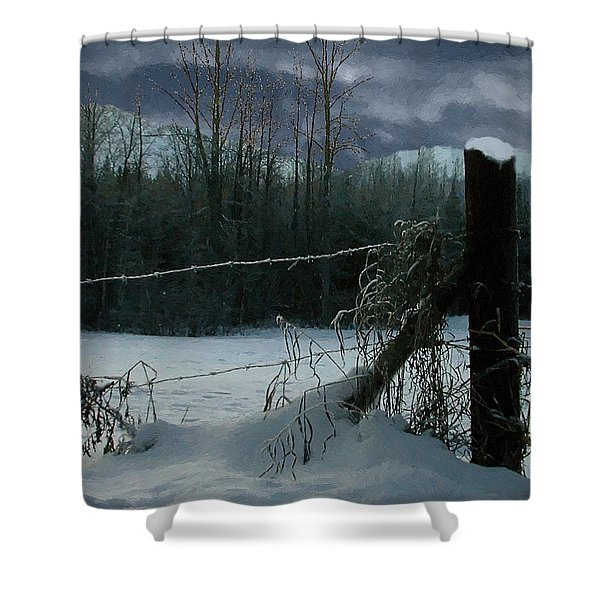 Weeping Winter Moon Shower Curtain by RC deWinter