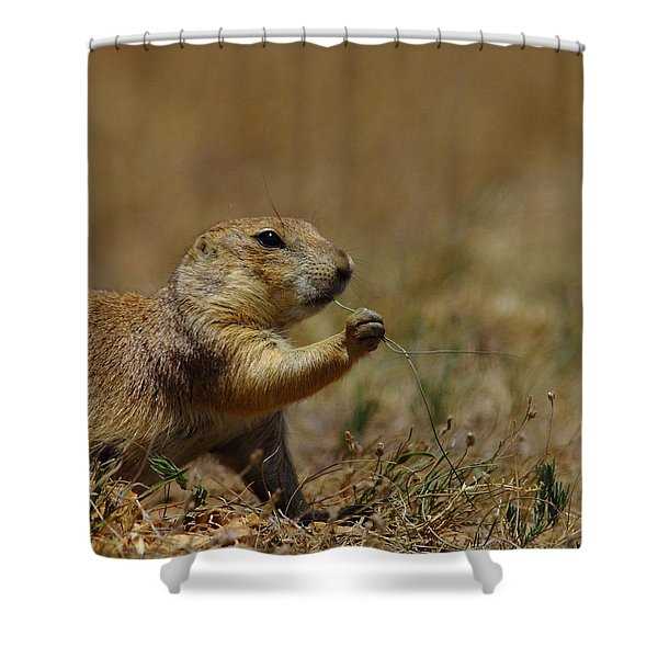 Well I Reckon So Shower Curtain by Robert Frederick