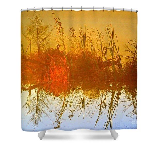 Dream Weaver Shower Curtain by Andrew Lorimer