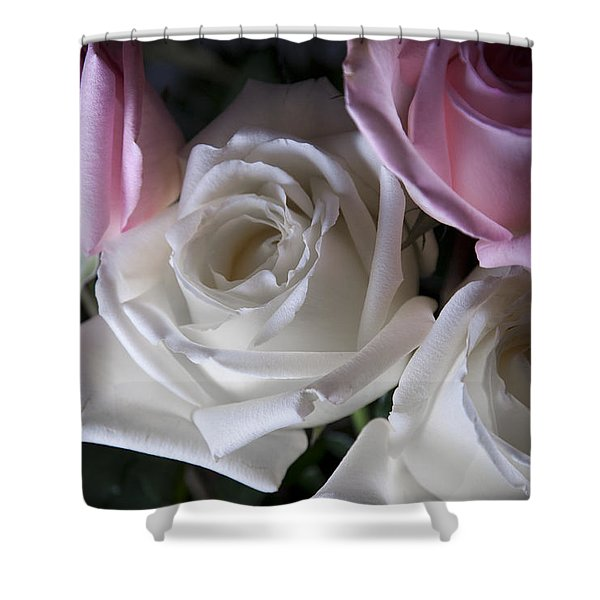 White And Pink Roses Shower Curtain by Jennifer Lyon