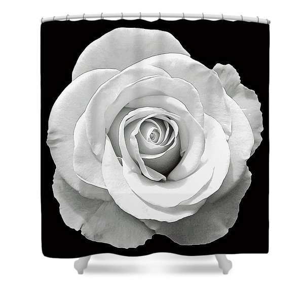 White Rose Shower Curtain by Aimee L Maher Photography and Art
