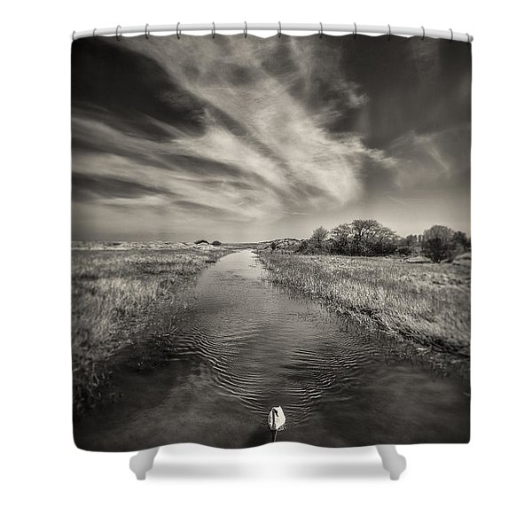 White Swan Shower Curtain by Dave Bowman