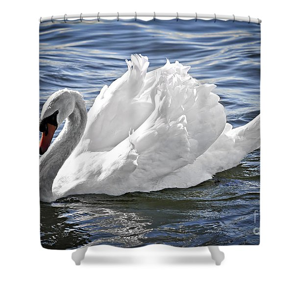 White swan on water Shower Curtain by Elena Elisseeva