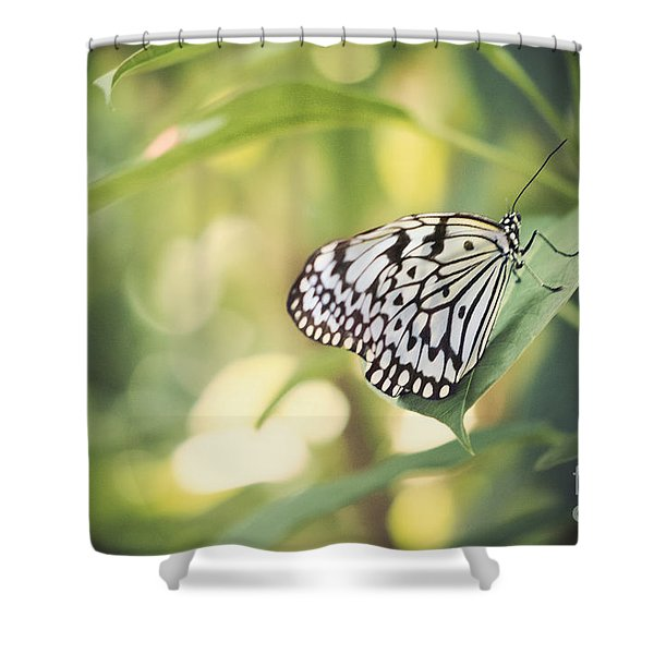 White Tree Nymph Shower Curtain by Juli Scalzi