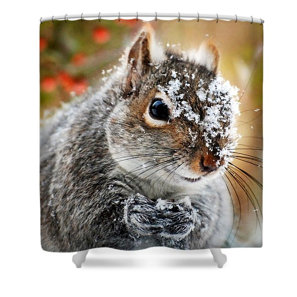 Wild Expedition Shower Curtain by Christina Rollo