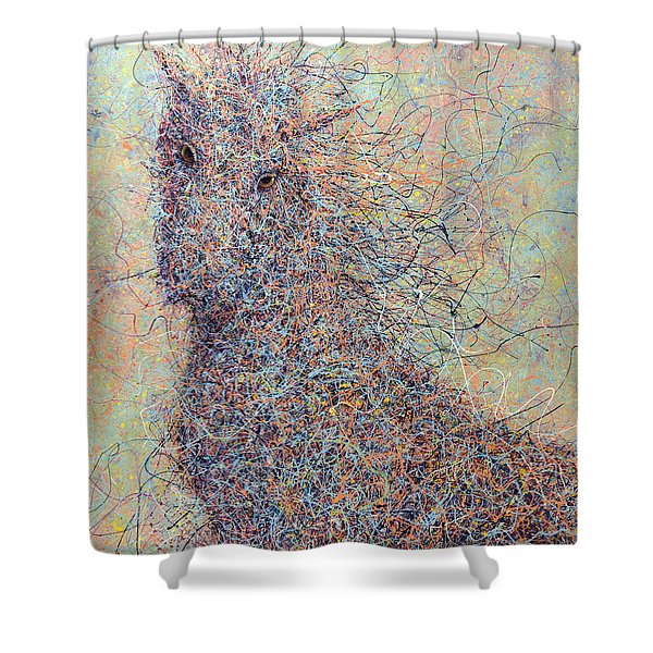Wild Horse Shower Curtain by James W Johnson