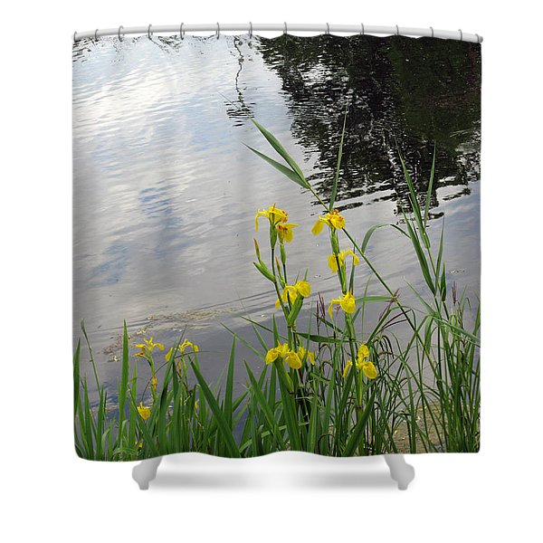 Wild Iris By The Pond Shower Curtain by Ausra Paulauskaite
