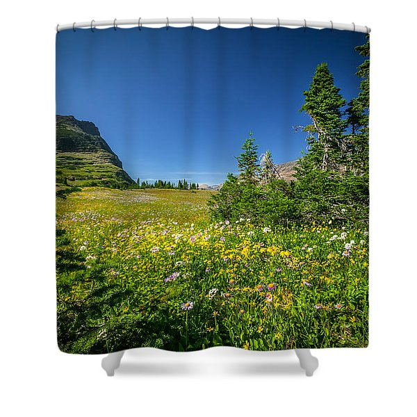 Wild Mountain Flowers Glacier National Park   Shower Curtain by Rich Franco