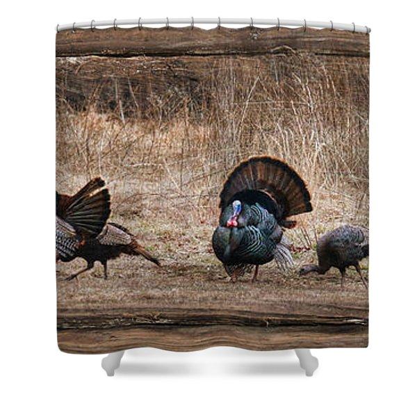 Wild Turkeys Shower Curtain by Lori Deiter