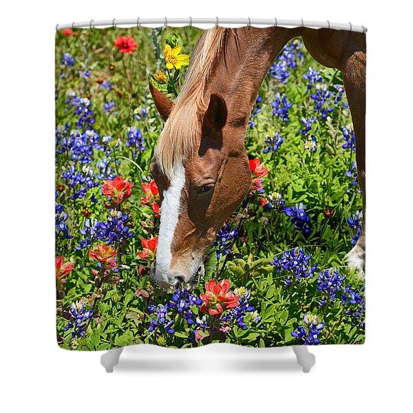 Wildflower Feast Shower Curtain by Lynn Bauer