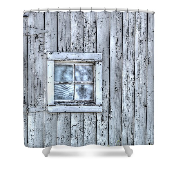 Window Shower Curtain by Juli Scalzi